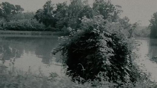 elm swampland valerio ferrario dop direttore della fotografia cinematographer